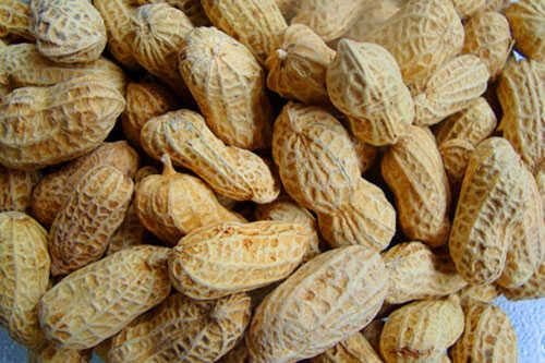 Vỏ đậu phộng